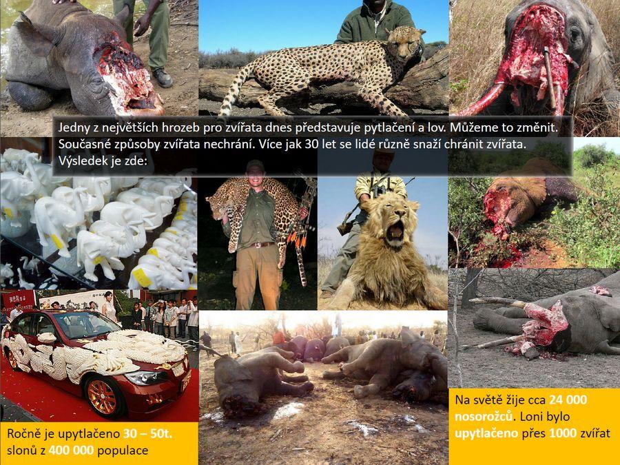 8ff4e35018a Desítky let ochrany zvířat - výsledky jsou zde. Ochrana zvířat nefunguje.  ...